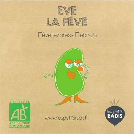 Mini-Kit graines de fèves bio – Eve la fève