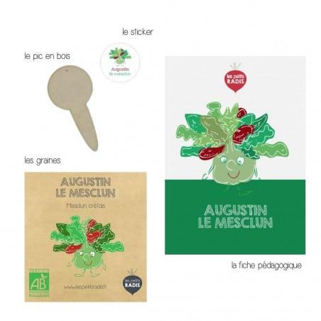 Graines-de-Mesclun-bio