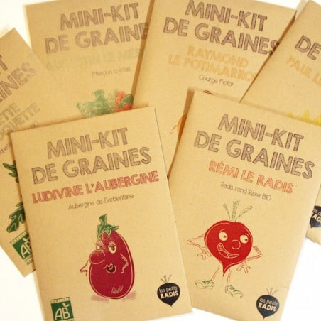 Graines-de-ciboulette-bio