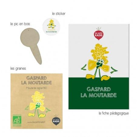 Graines-de-moutarde-bio