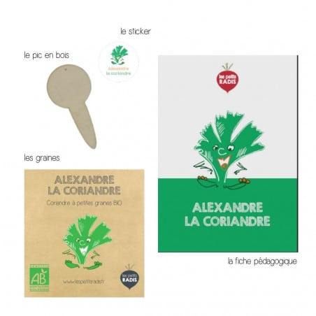 Mini-kit graines de coriandre bio