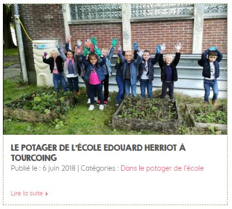 le potager de l'école de Tourcoing