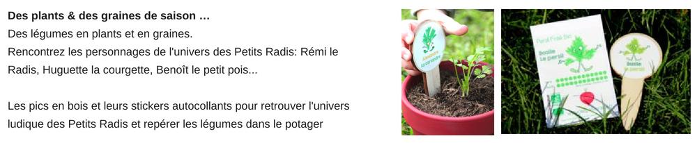 des plants et des graines pour faire le potager à l'école
