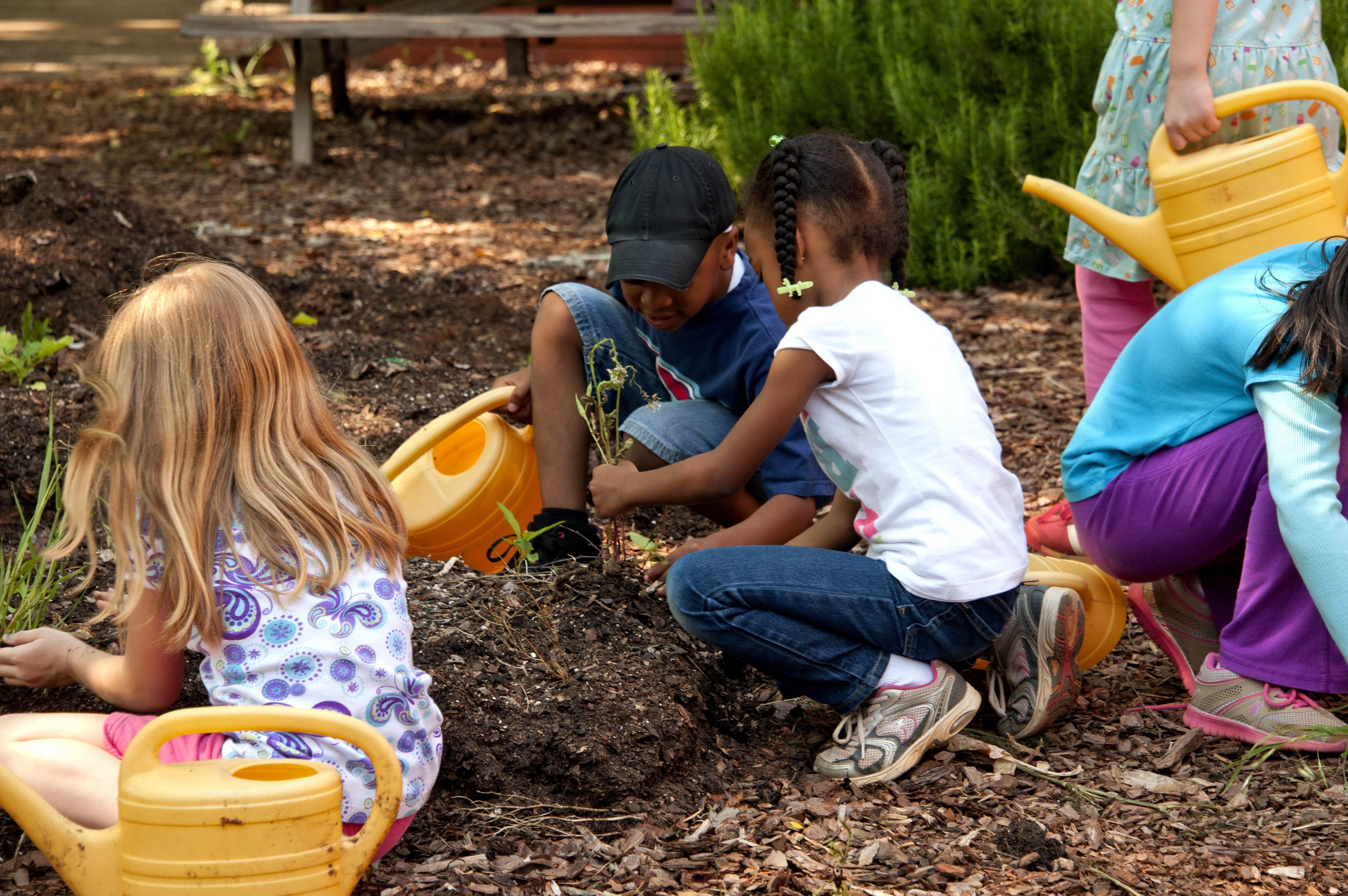 activité nature enfant