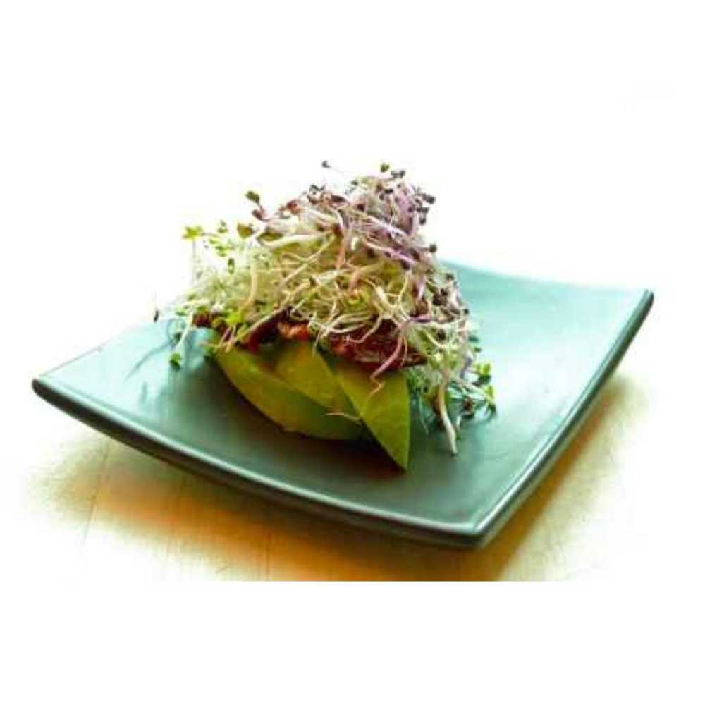 tartine-graines-germées