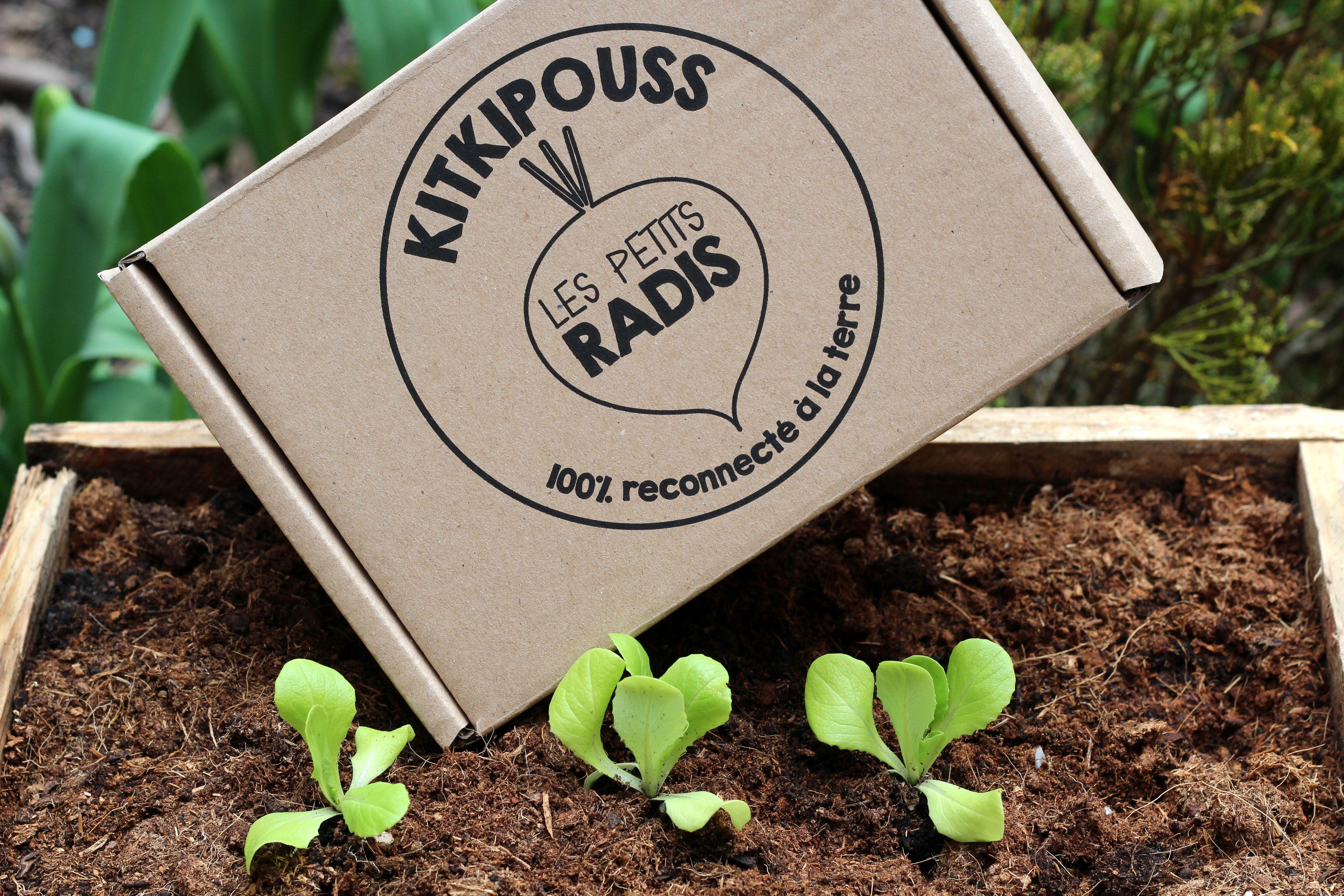 le Kitkipouss des petits radis